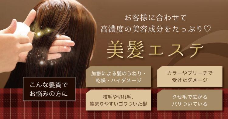 美髪エステで髪のエイジングケア! 高濃度美容液で驚くほどのツヤ髪へ